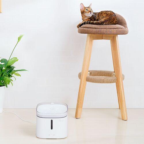 Máy uống nước cho chó mèo Kitten&Puppy MG-WF001